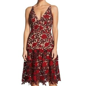 Dress the Population Lily Plunge Lace Fit & Flare